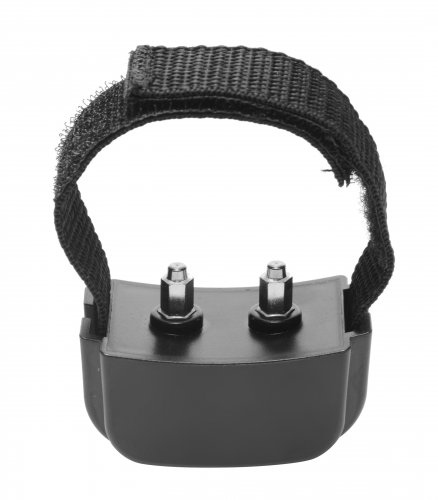 Remote Electric Shock Cock Ring Side View