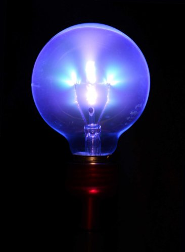 Twilight Violet Wand Light Bulb Adapter Black
