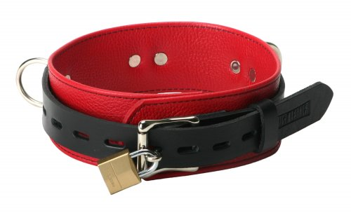 Tri Ring Locking Leather Red Collar Back View