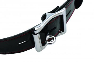 Locking Feeding Gag Buckle
