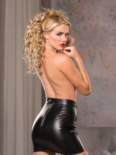Classic Mini Skirt Back