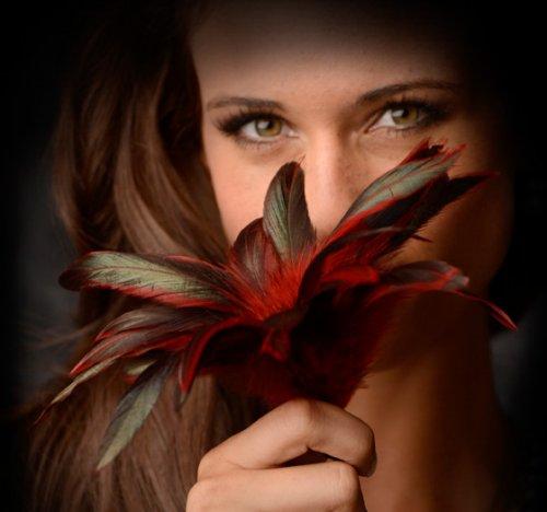 scarlet plume