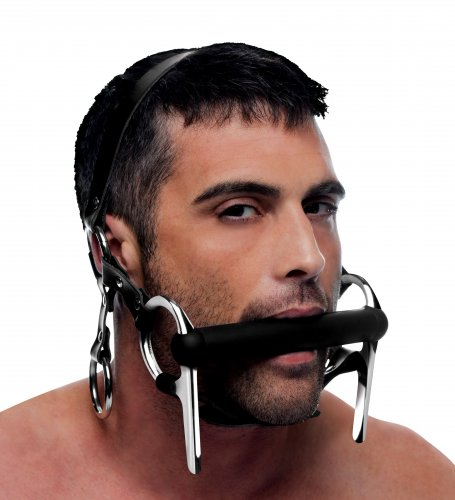 Silicone Bit and Bridle Head Harness