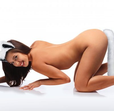 White Fox Ears & Tail Set With Model